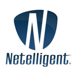 Netelligent                 logo